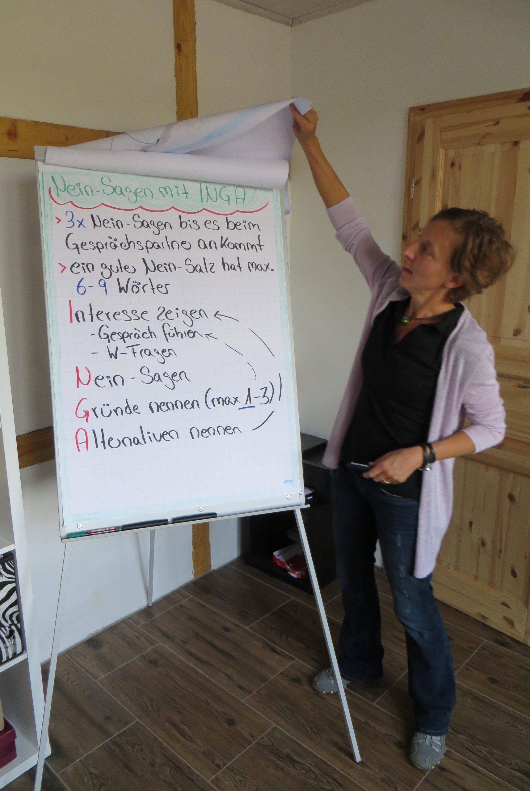 """Beispiel """"Auftakt Online-Seminar"""" (Flipchart)"""